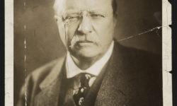 President Theodore Roosevelt - progressive reformers